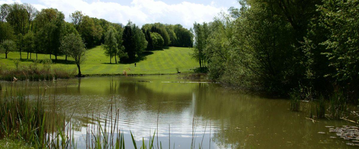 Golf-Club Heilbronn-Hohenlohe - Blick vom Herrenabschlag Schlosspark